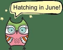 Cartoon Owl - Hatching in June